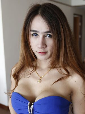 Hello LadyBoy - Thai ladyboy with big fake tits and long hair gets facial from tourist